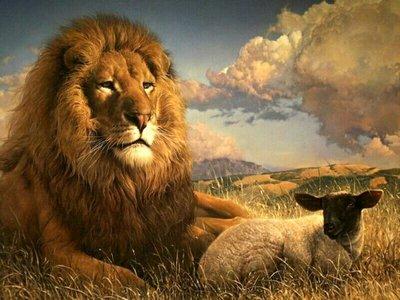 leão e cordeiro